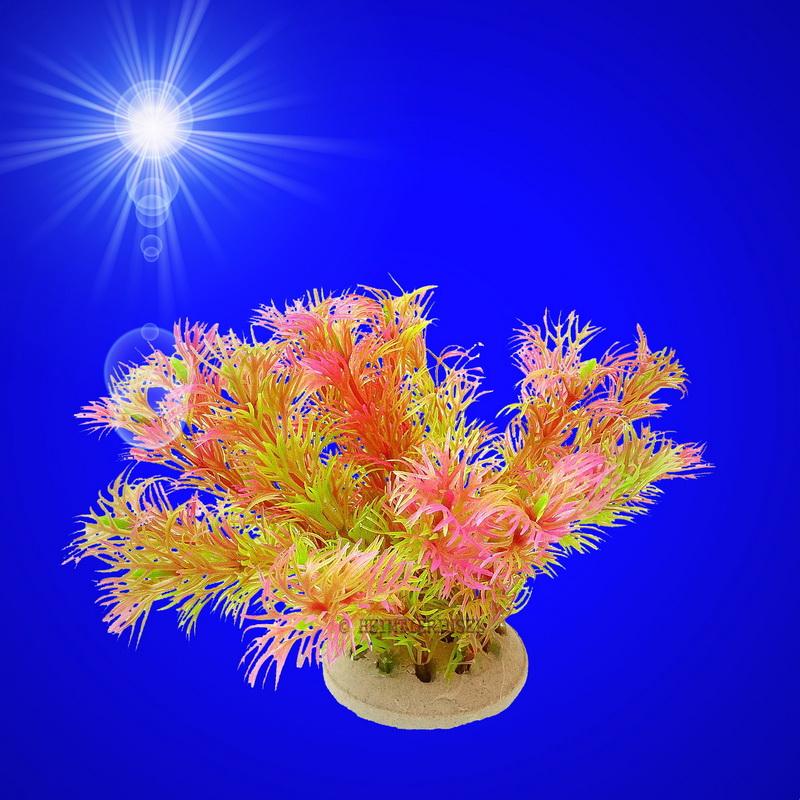 aquarium deko k nstliche wasserpflanze mit sockel zubeh r dekoration ebay. Black Bedroom Furniture Sets. Home Design Ideas