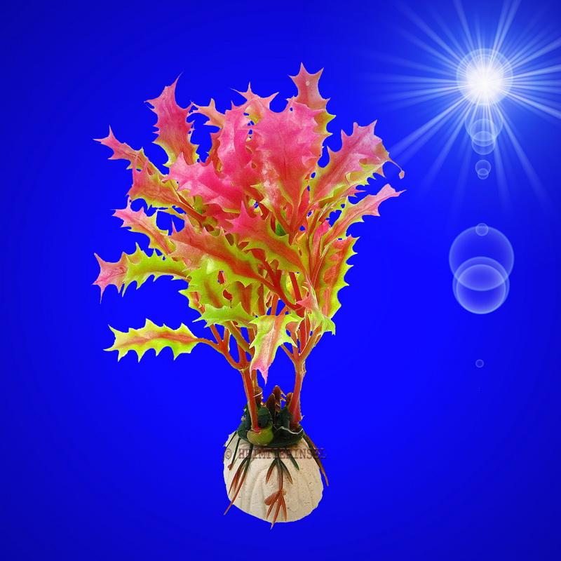 aquarium deko k nstliche kleine wasserpflanze m sockel zubeh r dekoration ebay. Black Bedroom Furniture Sets. Home Design Ideas